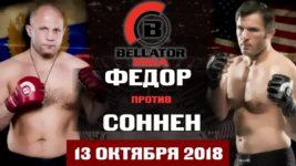 Прогноз экспертов на бой Федор Емельяненко Чейл Соннен 13 октября 2018