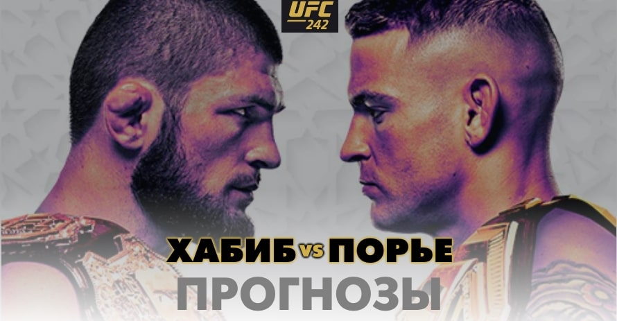 Прогноз на бой Хабиб - Порье UFC 242